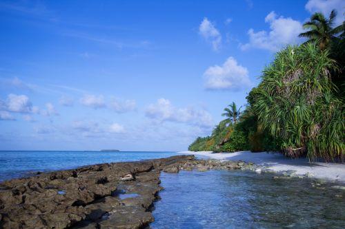 Island Saga