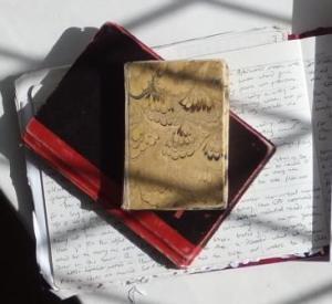 ideas book crop