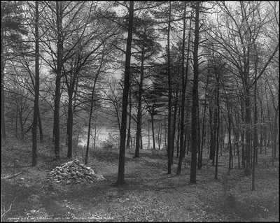 Site of Thoreau's cabin on Walden Pond, circa 1908 (Library of Congress)