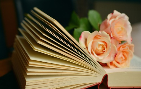 Favorite Books and Authors